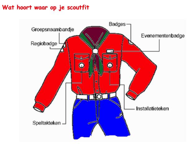 bevers scouting beyloo ter horst